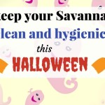 Clean Your Savannah Office This Halloween